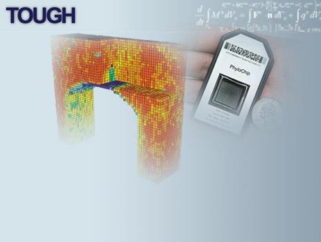Tough_phylo_award